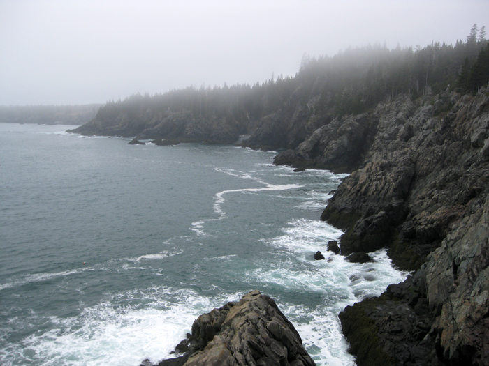 Bay of Fundy and Campobello – Bold Coast Maine