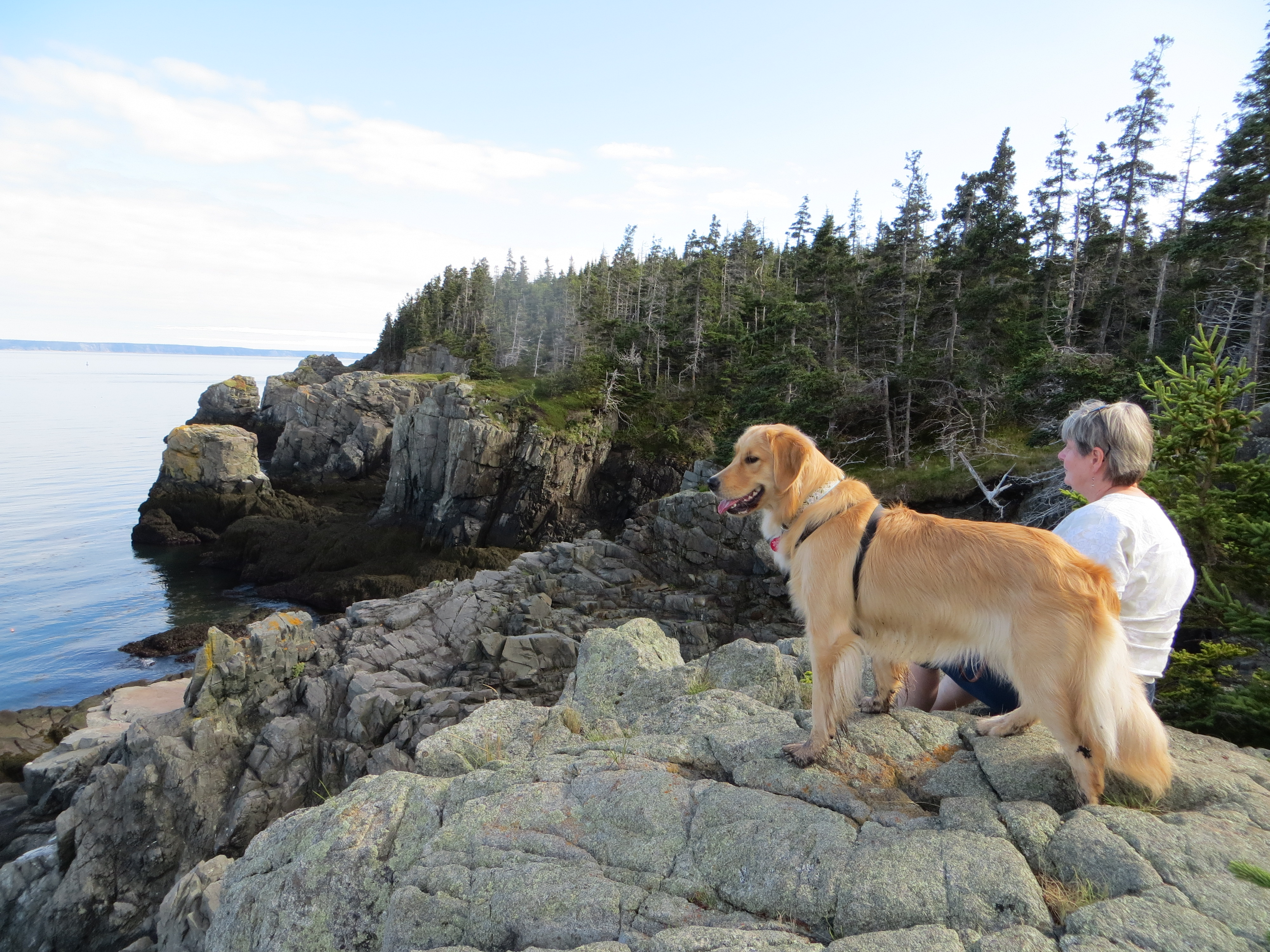 Family Adventures – Bold Coast Maine